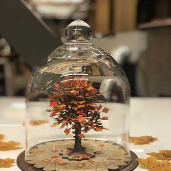 Capturing fall in a bottle