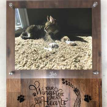 Memorial for my cat Lois